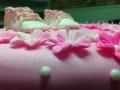 Birthday Cake 033