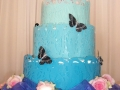 wedding-cakes-nelspruit-029