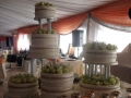 wedding-cakes-nelspruit-037